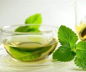 绿茶之龙井