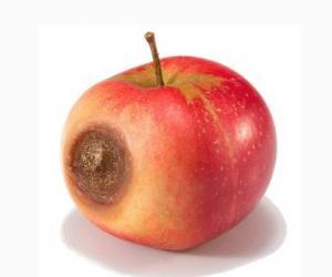 烂苹果可致癌苹果烂一点全得扔