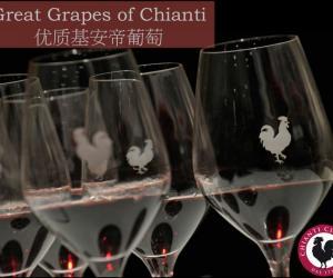 文化与韵味的交合体——基安蒂精美葡萄