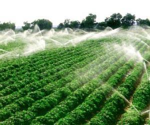 北京市拟三年内完成农业水价改革