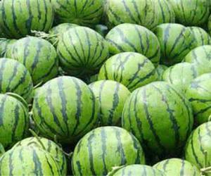 为养生立秋后不能吃西瓜了?