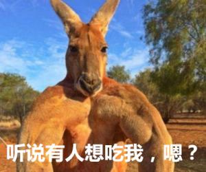 澳大利亚卖力向中国推销袋鼠肉