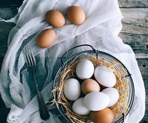白皮鸡蛋和红皮鸡蛋到底有什么区别?终于明白了